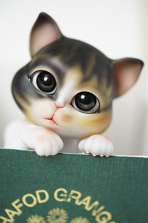 bubblepet_cat_molly_500750_03