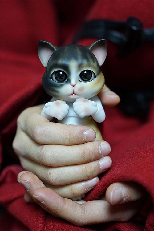 bubblepet_cat_molly_500750_07