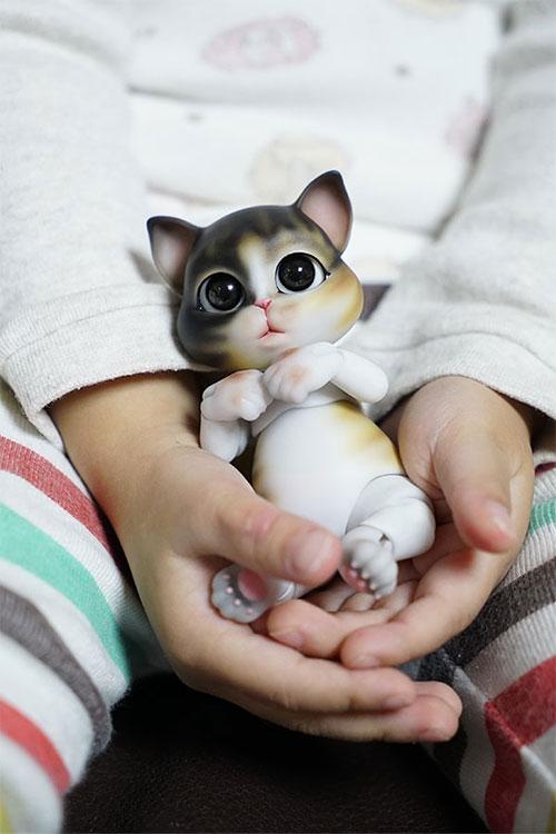 bubblepet_cat_molly_500750_12