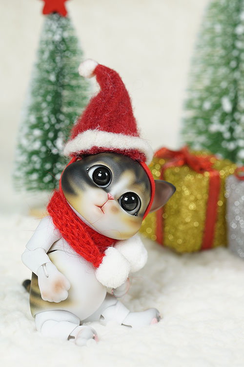 molly-with-chritmas_500750_02