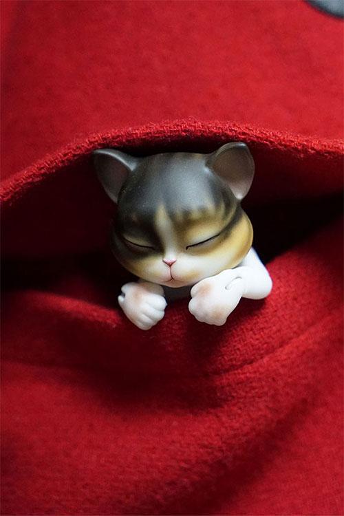 bubblepet_cat_molly_500750_09