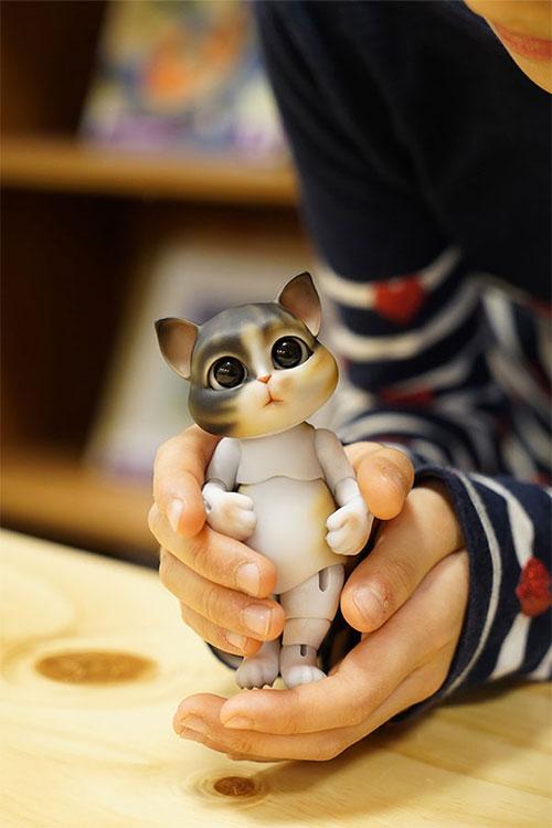 bubblepet_cat_molly_500750_11