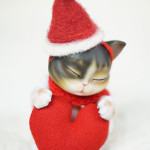bubblepet_cat_molly_558743_02