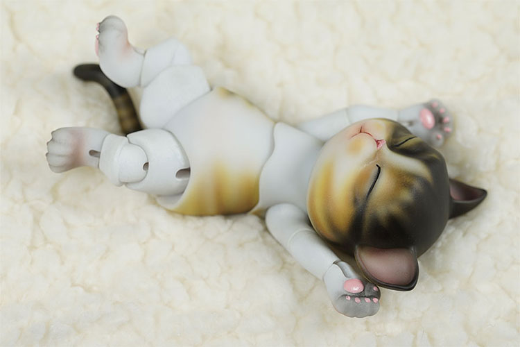 bubblepet_cat_molly_750500_03